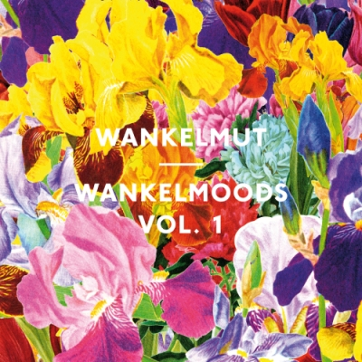Wankelmut - Wankelmoods Vol.1