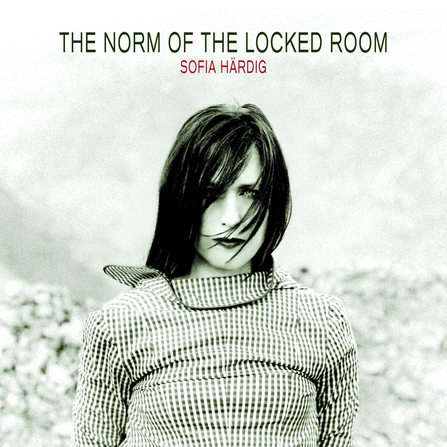 "Sofia Härdig - ""The Norm Of The Locked Room"""