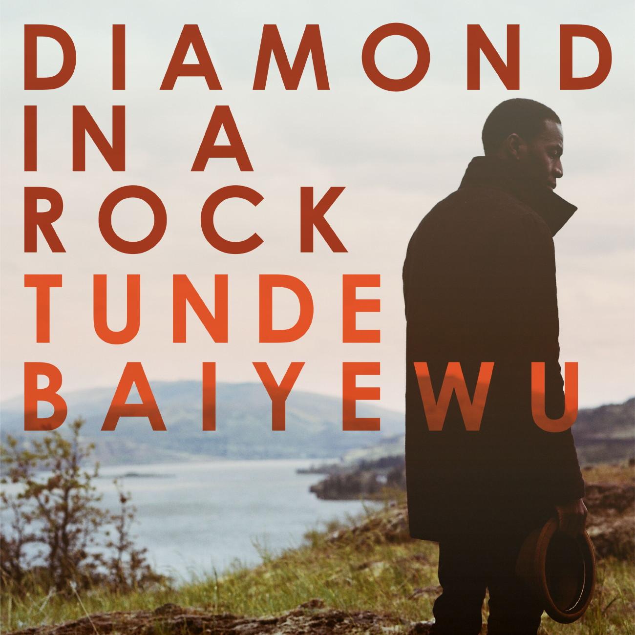 "Tunde Baiyewu – ""Diamond In A Rock"""