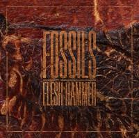 FOSSILS – Flesh Hammer