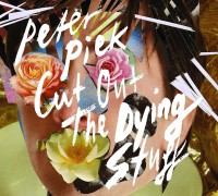 "Peter Piek - ""Cut Out The Dying Stuff""  (Solaris Empire/Broken Silence)"