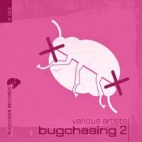 Various Artists - Bugchasing 2