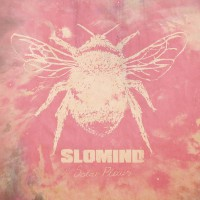 SLOMIND - Solar Plexus
