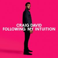 "CRAIG DAVID - ""Following My Intuition"" (Sony Music)"