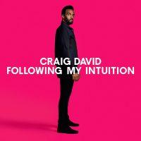 "CRAIG DAVID - ""Following My Intuition"" (Sony Music)"