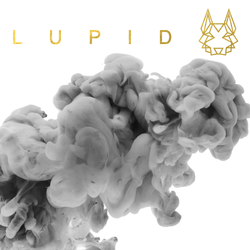"Lupid - ""Lupid EP"" (Airforce1/Universal)"